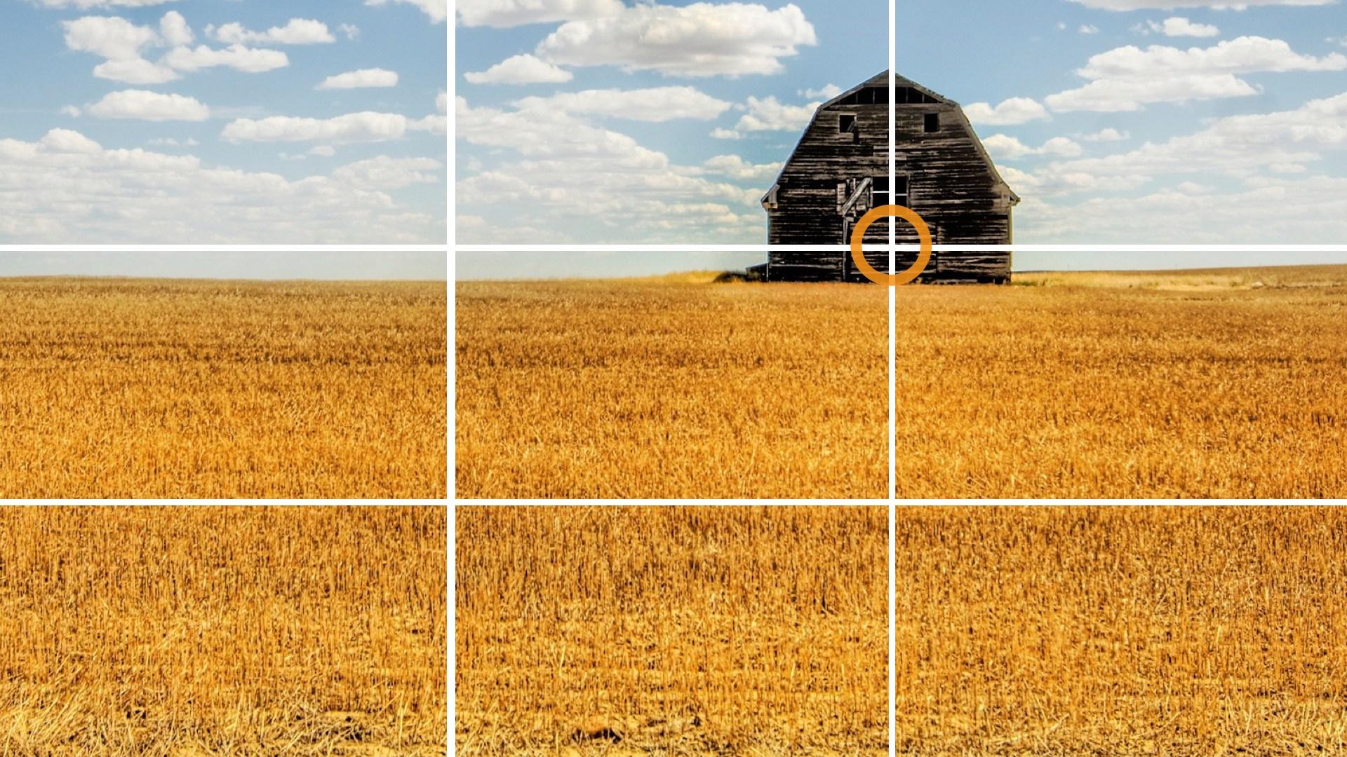 Как правильно шарпить фотографии для веб говорить мясных