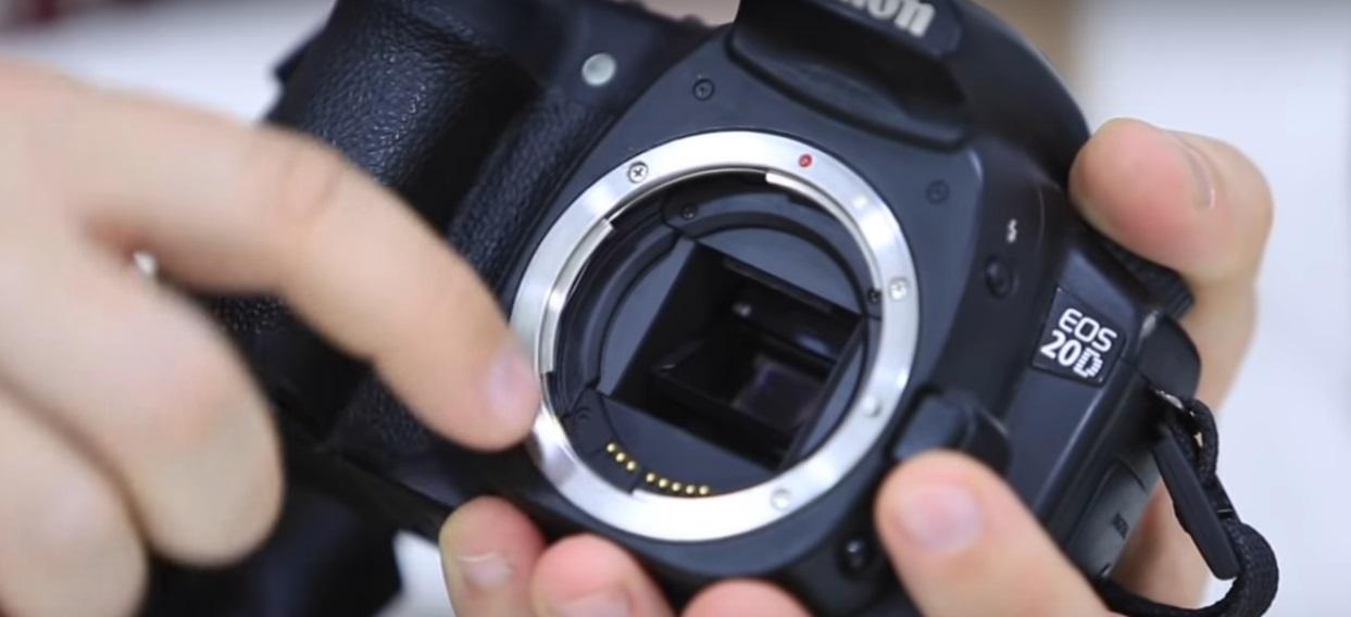как часто нужно сдавать фотоаппарат на проверку этом фото